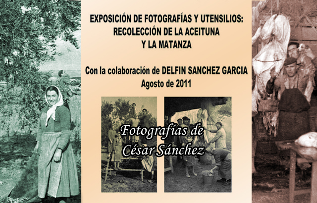 La recolección de la aceituna y la matanza (2010): Exposición fotográfica y de aperos de labranza